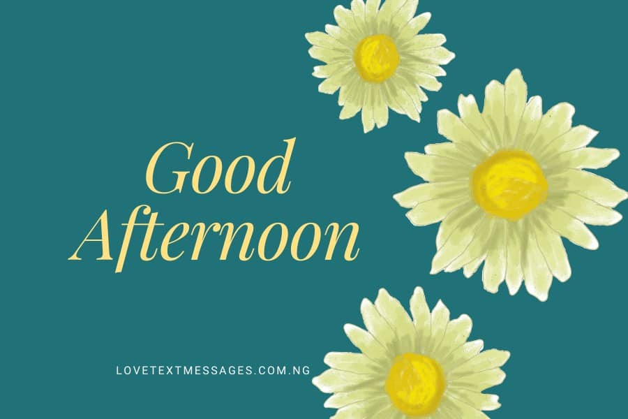 90 Good Afternoon Sms for Lovers and Loved Ones - Love