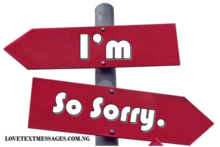 Apology Text Messages for Lover