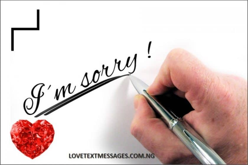 Sweet I Am Sorry Message for Lovers