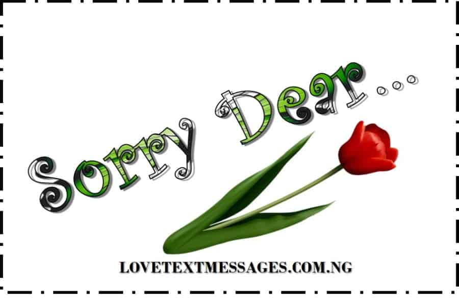 Sweet I Am Sorry Messages for My Love