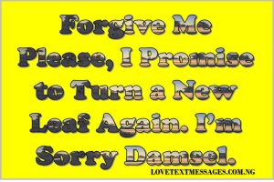 Sweet I Am Sorry SMS for My Love