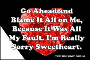 Sweet I Am Sorry for Message Him