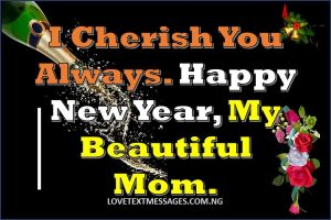 Happy New Year 2018 to My Mother