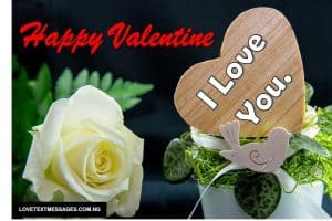 Valentine's Day Quotes for Friends