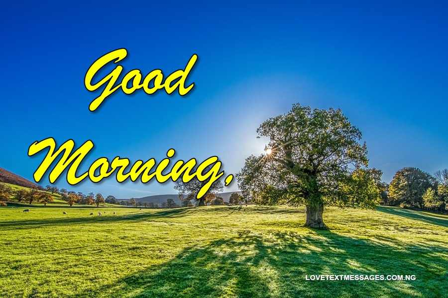 Long Good Morning SMS for Girlfriend