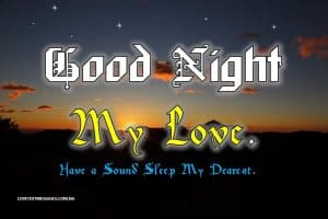 I Love You Good Night Quotes