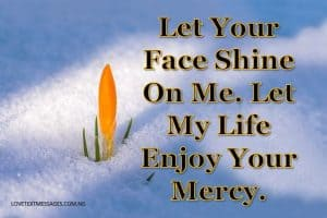 Grant Me Your Mercy, Lord