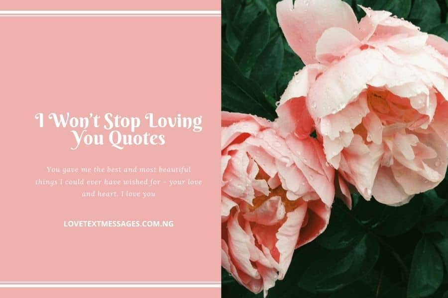 I Won't Stop Loving You Quotes