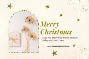 Christmas Greetings, Messages and Wishes for Co-worker / Colleague